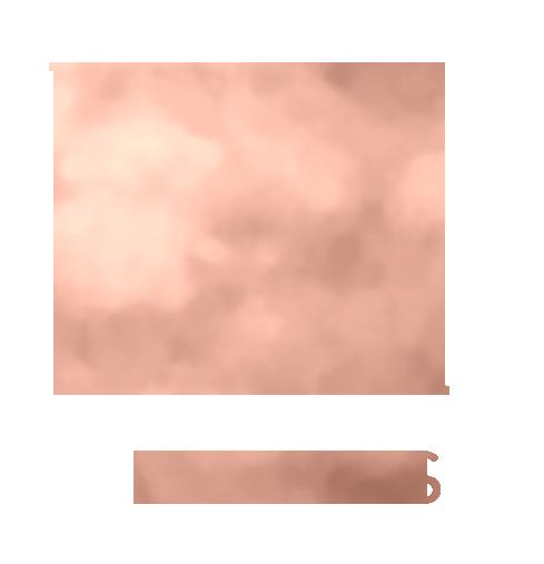 Velvet Alley Events